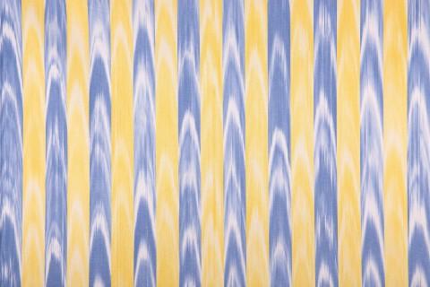 Telas de lenguas amarillo y azul